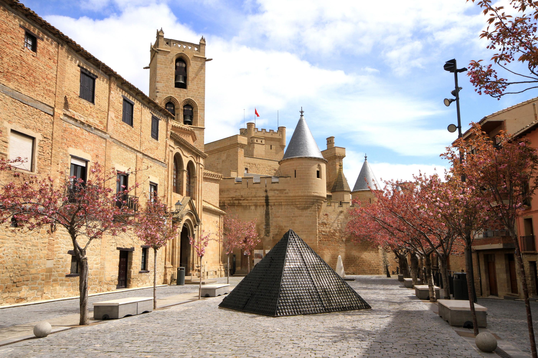 Castillo de Olite excursiones navarra baztan bardenas olite irati camino santiago